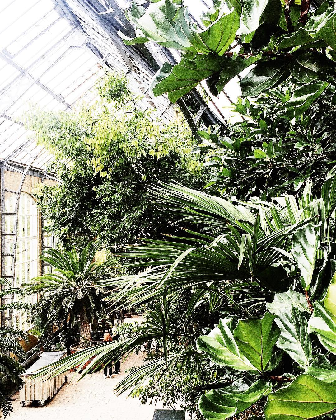 Virtual tour through a new botanical garden on the bloghellip