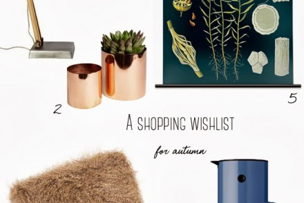 autumn_home_accessories