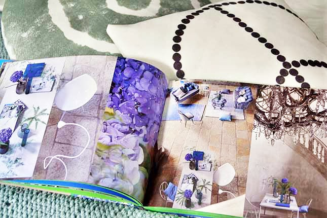 designers guild passion - photo #26