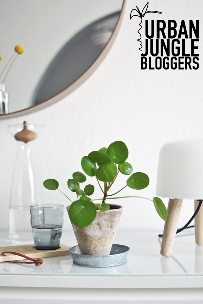 Urban jungle bloggers green social inspiration happy for Decoration urban jungle