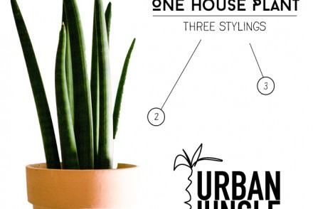 Urban-Jungle-Bloggers-Styling