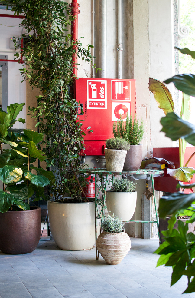 Spanish Design Week, Barcelona, Hostel Tip, Casa Gracia