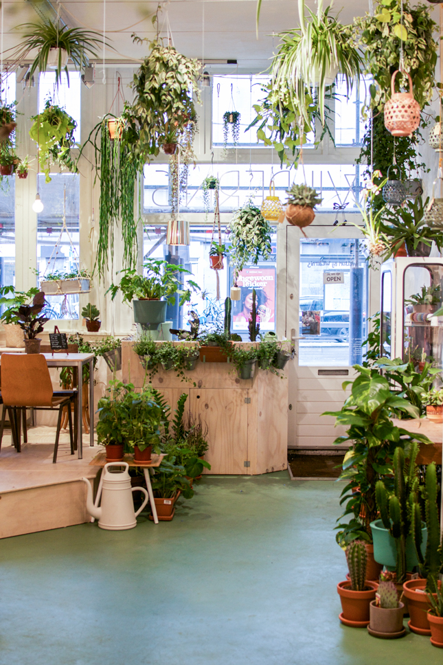 Wildernis in amsterdam happy interior blog - Plant decorating ideas tasteful nature ...