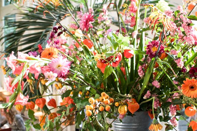 Lost in Plantation, botanical gardens, Hortus Botanicus, Amsterdam, plants, Urban Jungles