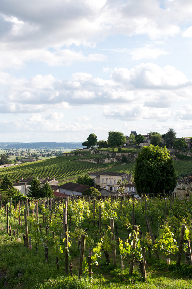 Vineyards & Flowers: Visiting Saint-Émilion