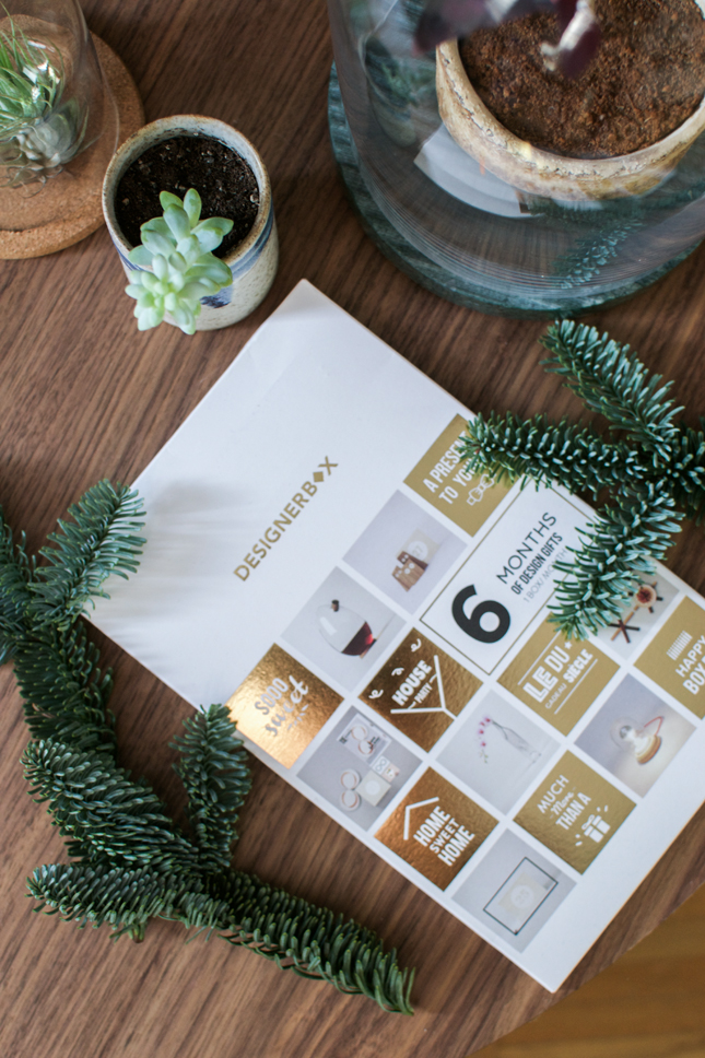 Urban Jungle Bloggers, planty wishes, giveaway, Designer Box, Xmas decoration, Christmas decoration, plants, houseplants, succulents, Gewinnspiel, Verlosung