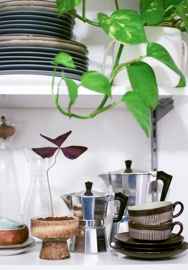Urban jungle bloggers kitchen greens decoration for Decoration urban jungle