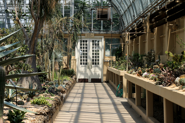 Lost in Plantation, Botanical Garden, Chicago, Garfield Park Conservatory, Urban Jungle Bloggers