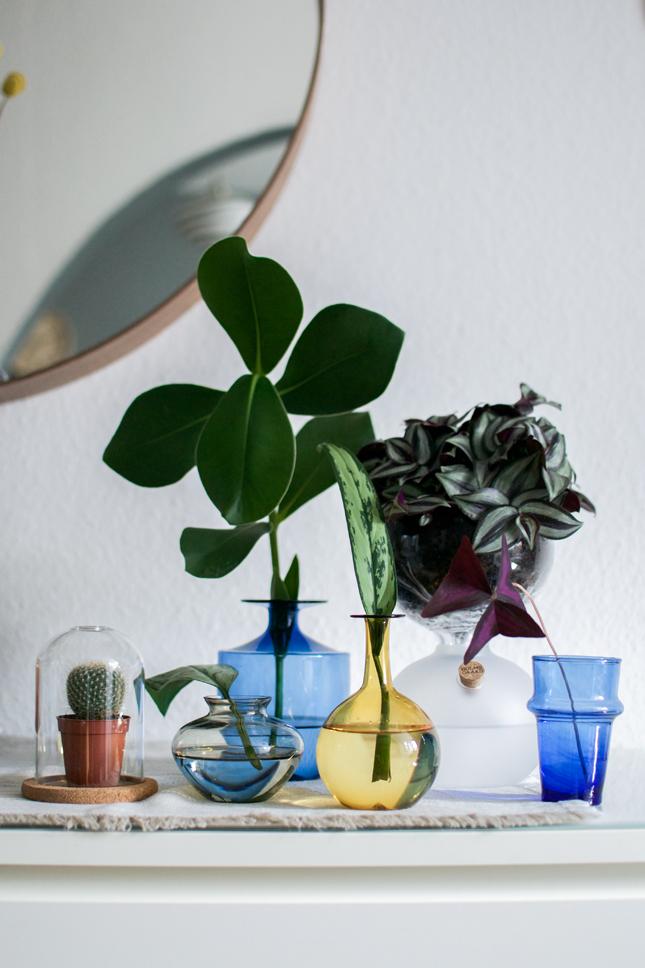 Urban Jungle Bloggers, plant styling, plants, plants and glass, glass vessels, houseplants