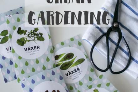 IKEA, hydroponic system, urban gardening, Krydda, Växen