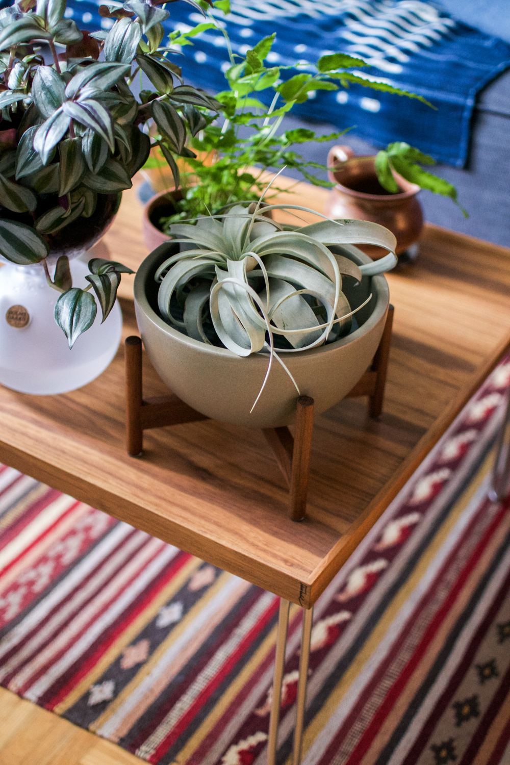 interior, interior styling, boho, bohemian, mid-century, coffee table, plants, Finn Juhl, Danish design, Bluetooth speaker, planter, Modernica, Grundig