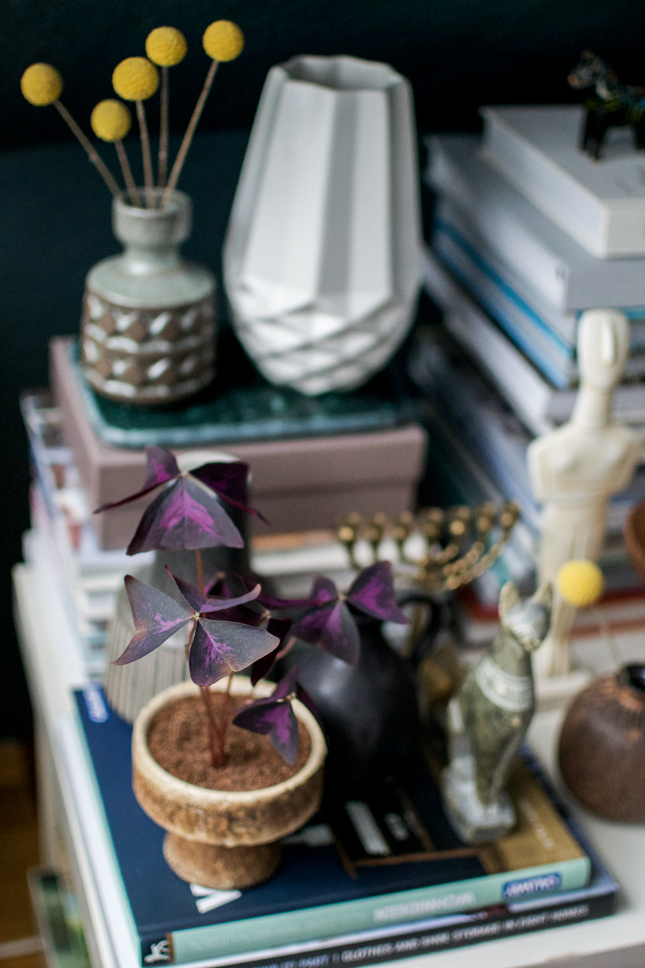 Urban Jungle Bloggers, plants, plant styling, houseplants, green styling, indoor plants, Oxalis, boho, bohemian styling