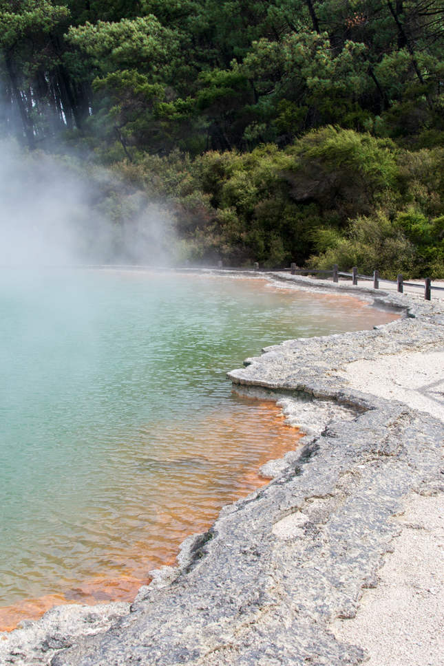 New Zealand, Travel Tips, Travel Blog, New Zealand Tips, Rotorua, Hawkes Bay, Napier, Mahia, Discover New Zealand, Travel Blog