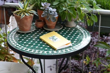 instax, plant guide, handmade, urban jungle bloggers, plants, plant care, green living, balcony