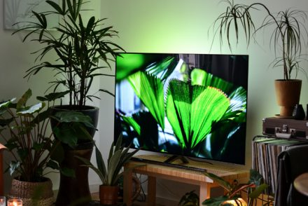 Philips TV, Urban Jungle, Urban Jungle Bloggers, Ambilight, Home Entertainment, Living Room, Plants, Home Decor, TV, Decorate your TV